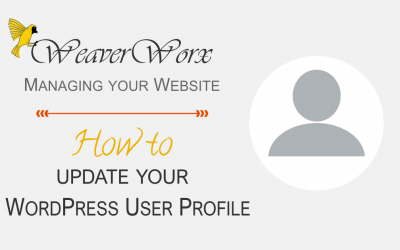 How to Update Your WordPress User Profile